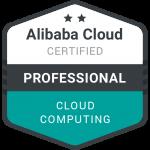Chirag Nayyar Alibaba Professional Logo